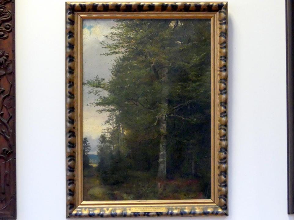 Hans Thoma: Buche am Waldrand, 1861