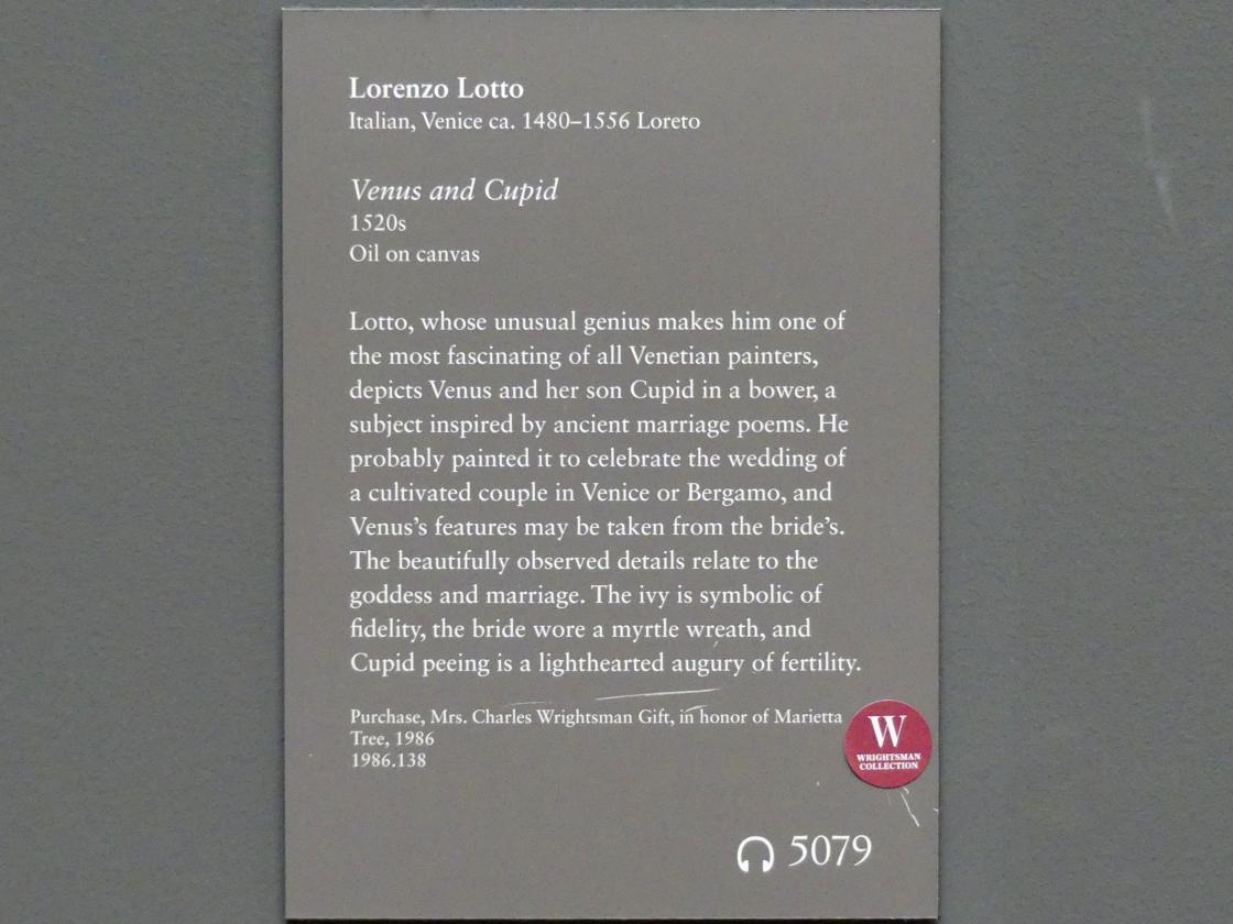 Lorenzo Lotto: Venus und Amor, um 1520 - 1530, Bild 2/2