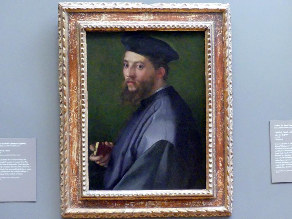 Andrea del Sarto: Bildnis eines Mannes, 1528 - 1530