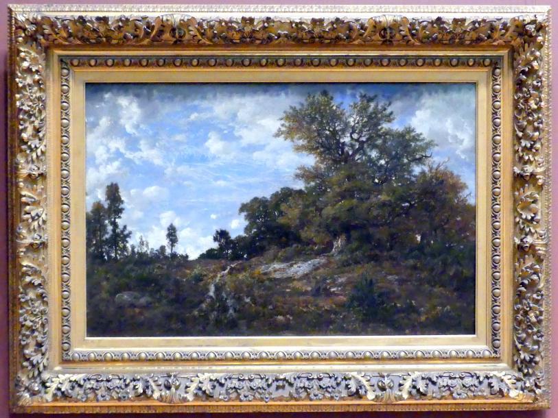 Théodore Rousseau: Waldrand bei Monts-Girard, Wald von Fontainebleau, 1852 - 1854