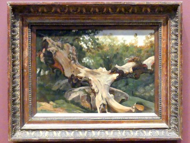 Antoine-Xavier-Gabriel de Gazeau, Comte de La Bouëre: Entwurzelter Baum bei Olevano Romano, 1833