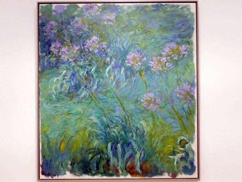 Claude Monet: Schmucklilien, 1914 - 1926