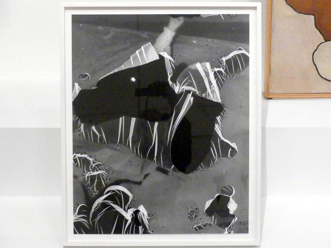 Eileen Quinlan: Durchgehen, 2013
