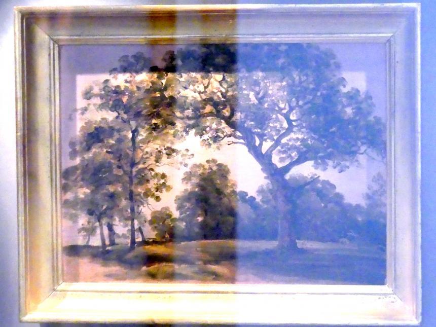 Johann Georg von Dillis: Landschaftsstudie mit Bäumen, Undatiert