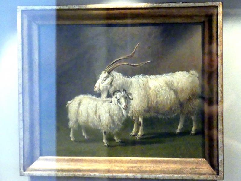 Jakob Philipp Hackert: Angoraziege und -ziegenbock, 1796